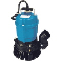 Rental store for 2  SUBMERSIBLE ELECTRIC PUMP LB-800 in Falmouth MA
